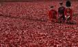 Homens das forças de segurança inglesas adicionaram novas papoulas de cerâmica à instalação 'Blood Swept terras e mares de Red', na Torre de Londres, nesta quinta-feira. A instalação será concluída em 11 de novembro e marca partte das comemorações pelo centenário da Primeira Guerra Mundial