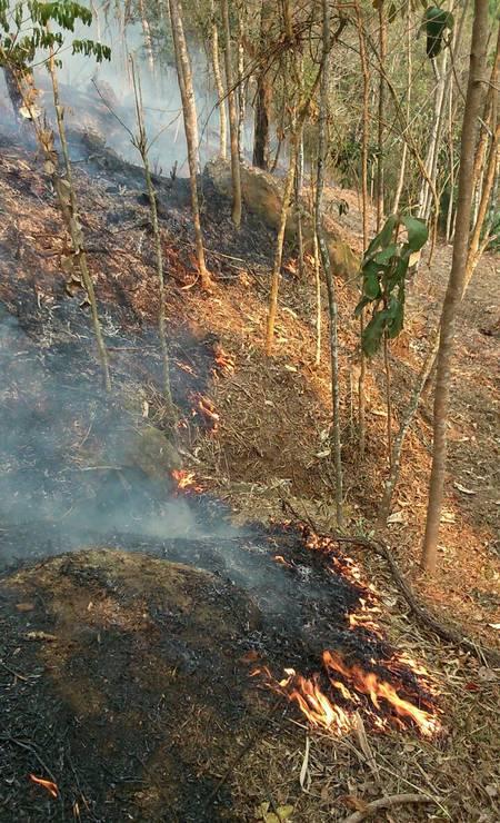 Primeira área atingida foi no distrito de Bonfim, em Corrêas Foto: Divulgação