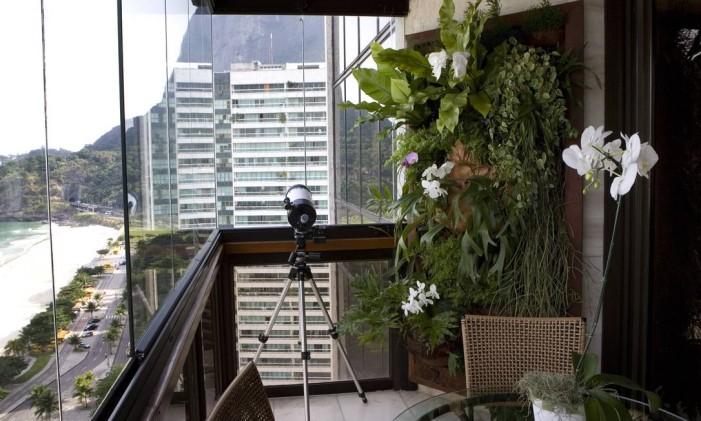 Proteja mais as plantas nos andares mais altos Foto: Alessandra del Bene / Agência O Globo