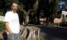 Alexandre Monteiro, engenheiro agrônomo e paisagista, mora na avenida e lamenta a morte das figueiras Foto: Gustavo Stephan / Agência O Globo
