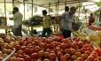 Cebola, tomate, batata e alface americana são os produtos que mais tiveram aumentos nas feiras livre. Aqui na Av Rui Barbosa, no Flamengo