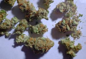 Maconha (cannabis) em Denver, Colorado, nos EUA: autorização para venda da erva em parte do país gerou boom de investidores Foto: Matthew Staver / Bloomberg/9-1-2014
