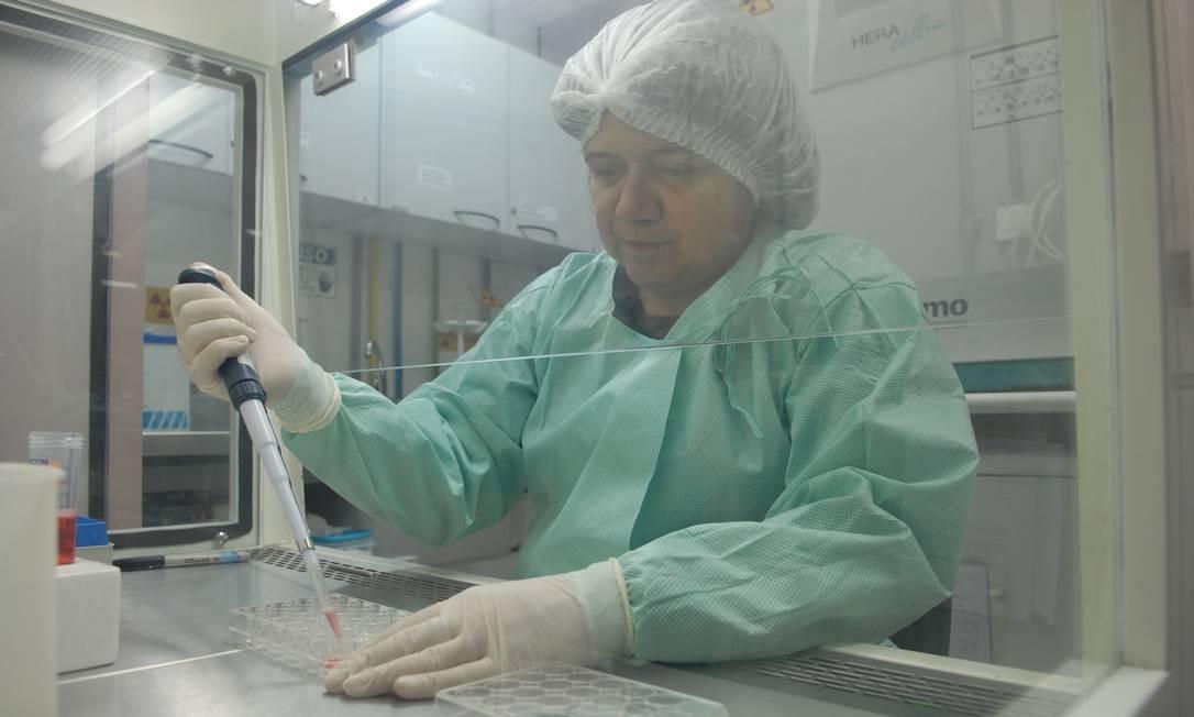 A pesquisadora Myrna Bonaldo em laboratório na Fiocruz: trabalho minucioso de engenharia genética para editar e alterar vírus da febre amarela Foto: / Divulgação