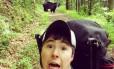 Apesar de grandes e pesados, ursos são animais ágeis e velozes
