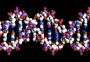 As pesquisas conseguiram identificar mutações que também influenciariam o desenvolvimento do autismo Foto: REUTERS