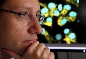 O neurocientista Stevens Rehen Foto: Gustavo Stephan / Agência O Globo