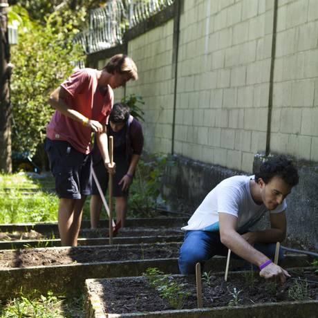 Educação ambiental. Alunos de colégio no Rio cuidam de horta: ONU quer sustentabilidade nos currículos Foto: Guilherme Leporace / Agência O Globo