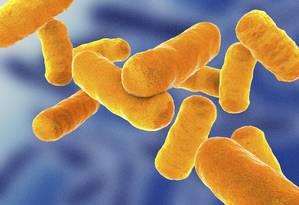 'Superbactérias' causariam prejuízos de até US$ 100 trilhões Foto: Science Photo Library