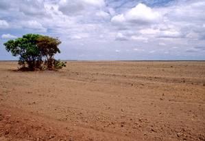 Estudo inédito da Embrapa mostra que cerca de 60% das pastagens do Cerrado têm algum estágio de degradação, por falta de um plano de manejo. Outros biomas e cidades são afetados pelo mau uso do solo Foto: Latinstock