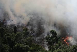 Uma área cinco vezes maior do que a cidade do Rio de Janeiro foi destruída na Amazônia Legal entre agosto de 2012 e julho de 2013 Foto: NACHO DOCE / REUTERS