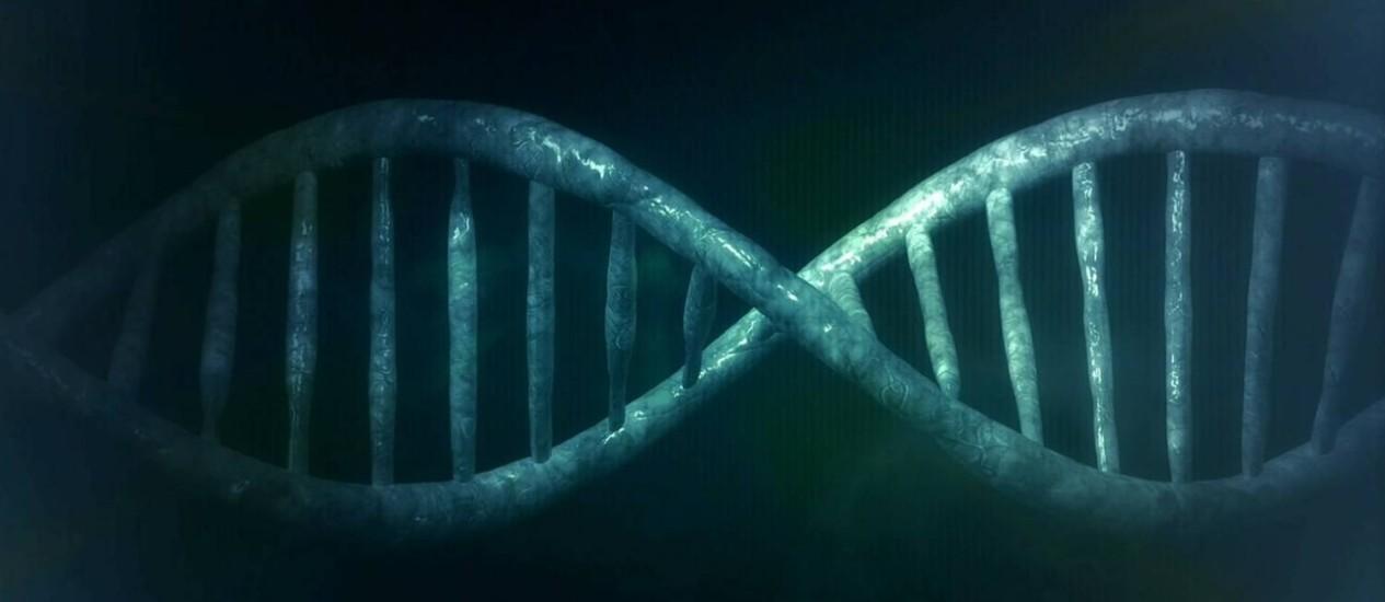 Três mil genomas terão sido sequenciados até janeiro Foto: Reprodução