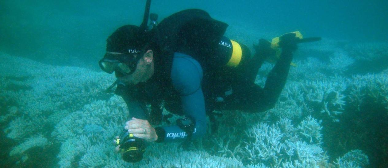 Mergulhador nas Ilhas Marshall, arquipélagos do Pacífico ameaçado de embranquecimento por fenômeno similar ao 'El Niño' Foto: Reprodução da internet