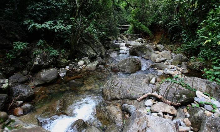 A Reserva de Tinguá estende-se por quatro municípios. A maior parte, entretanto, localiza-se em Nova Iguaçu Foto: Márcio Alves / Agência O Globo