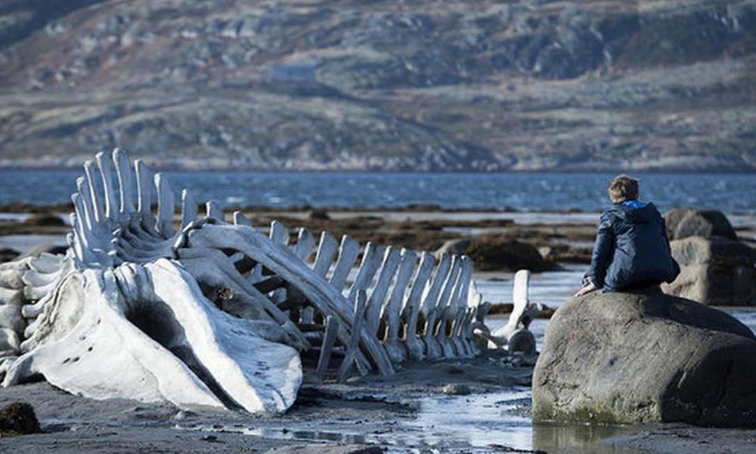 Cena de Leviatã, do diretor russo Andrei Zvyagintsev Foto: / Divulgação