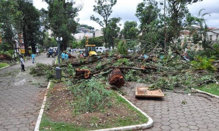 Derrubada de árvores causa protestos em Nova Friburgo