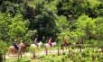 A cavalgada é uma das opções na região de Socorro