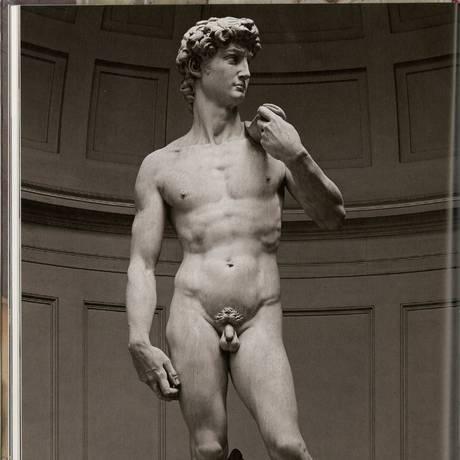 A estátua de Davi, de Michelangelo Foto: Agência O Globo
