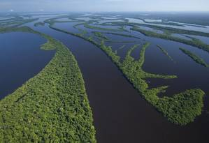 Arquipélago das Anavilhanas, no Amazonas: governo não investe o suficiente em regularização fundiária e áreas de conservação ficam sujeitas a ocupações ilegais Foto: Latinstock