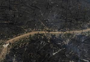 Área queimada para pastagem de gado em Novo Progresso, no Pará Foto: NACHO DOCE/Reuters/23-9-2013