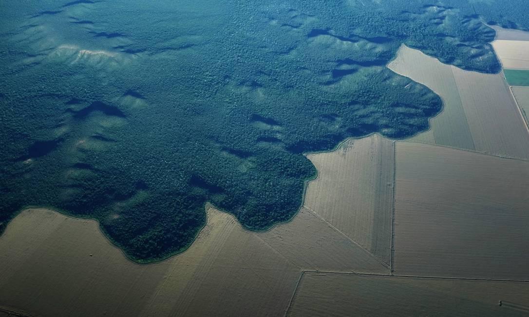Área desmatada da Amazônia é transformada em fazenda agrícola próximo a Alta Floresta, no Pará Foto: Reuters / Nacho Doce
