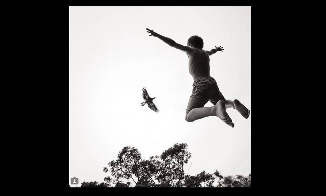 O fotógrafo australiano Cameron Bloom registra a inusitada relação de carinho entre seus três filhos, sua esposa e uma ave chamada Penguin Bloom Reprodução/Instagram