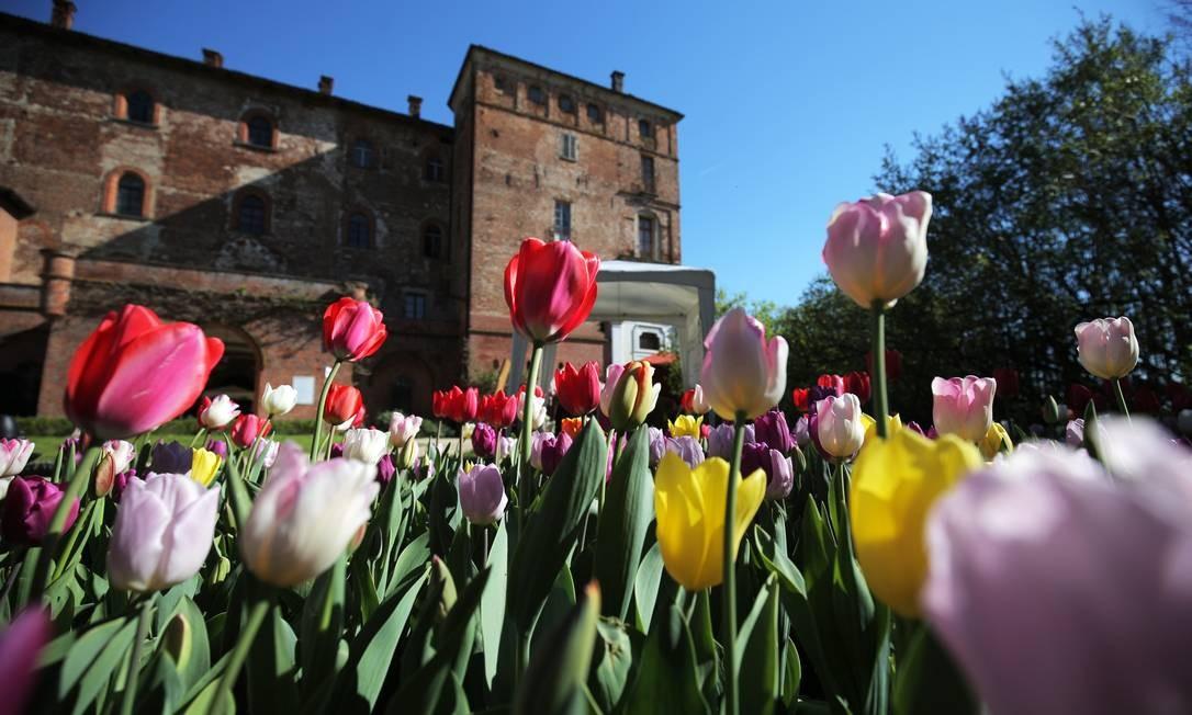 Nem só de flores de cerejeira se faz a primavera. Mais de 75 mil tulipas, de várias cores, enfeitam os jardins do Castelo de Pralormo, perto de Turim, na Itália. Foto: MARCO BERTORELLO / AFP
