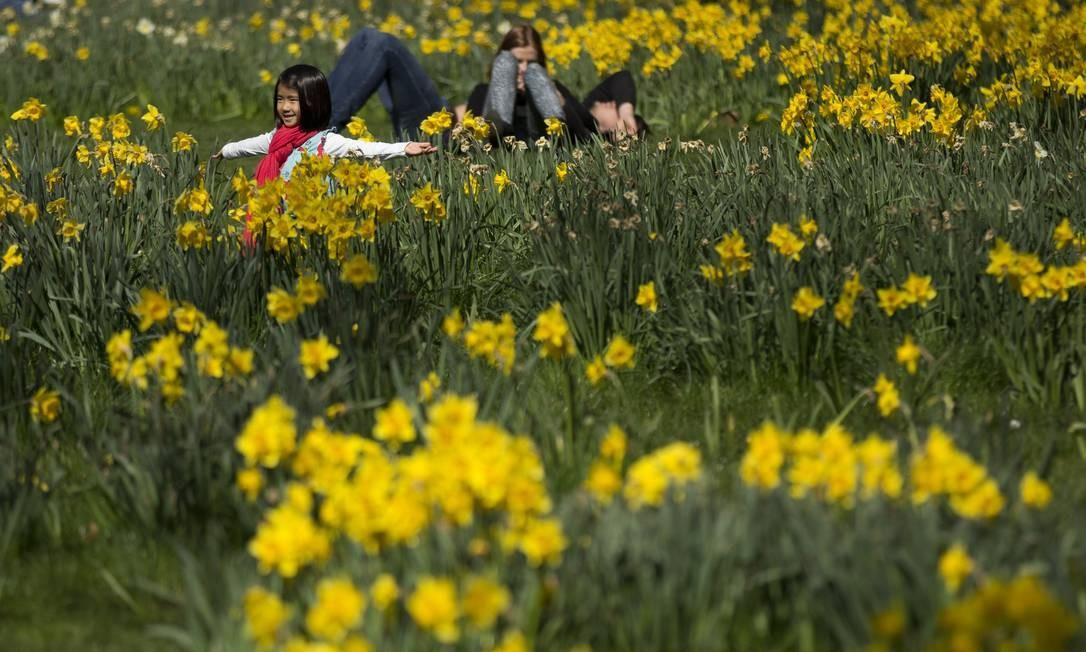 Entre os narcisos do Green Park, em Londres, uma menina se diverte posando para fotos, num dos ensolarados dias do início da nova estação. Foto: Matt Dunham / AP
