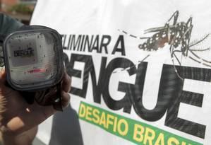 O perigo do Aedes: estudo de campo com mosquitos, realizado pela Fiocruz: no Rio, suspeita de casos no primeiro trimestre é três vezes maior que no mesmo período do ano passado Foto: Fabiano Rocha