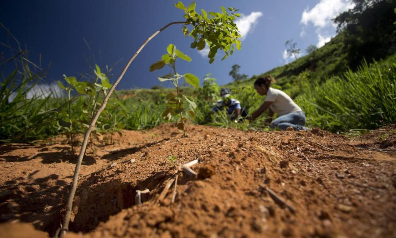 Mulher trabalha no reflorestamento em área de nascente na Fazenda Santa Izabel, em Aimorés Foto: Márcia Foletto / Agência O Globo