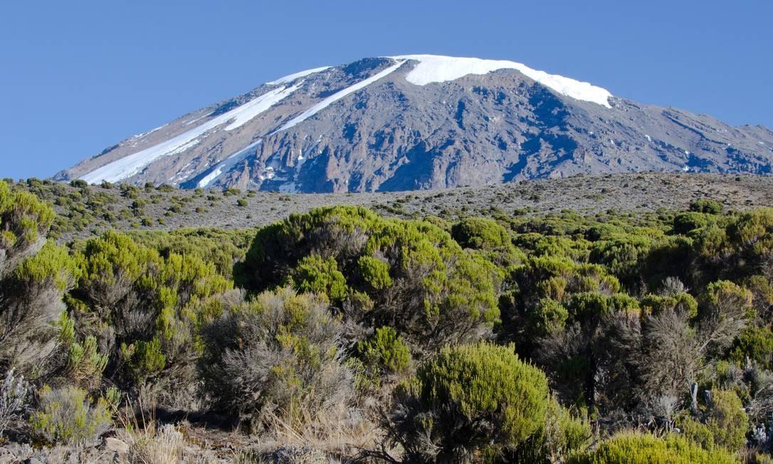 Alerta de cientistas pede mais atenção com ambientes de elevada altitude Foto: Douglas Hardy/UMass Amherst