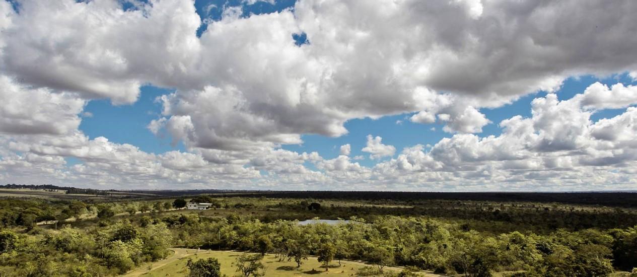Cerrado brasileiro é um dos focos de desmatamento mais preocupantes Foto: André Coelho/12-07-2013
