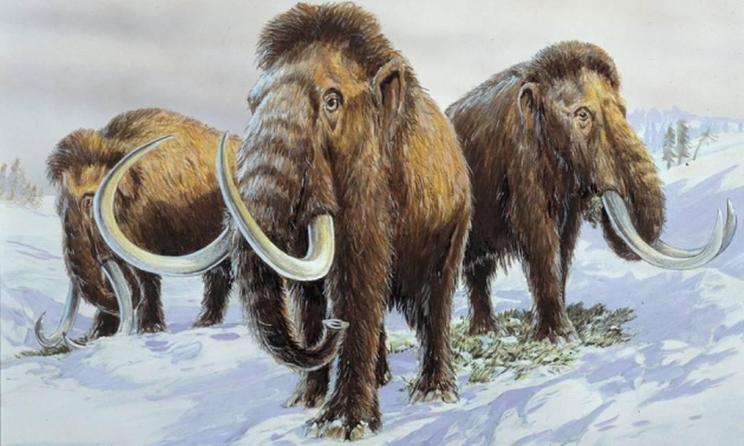 Ilustração reproduz mamutes, extintos há milhares de anos Foto: Divulgação/Museu da História Natural de Londres