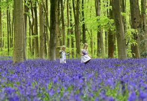 Crianças brincam em uma floresta na Inglaterra: produtos e serviços de sistemas florestais e agroflorestais serão fundamentais para garantir a segurança alimentar do planeta Foto: REUTERS/TOBY MELVILLE