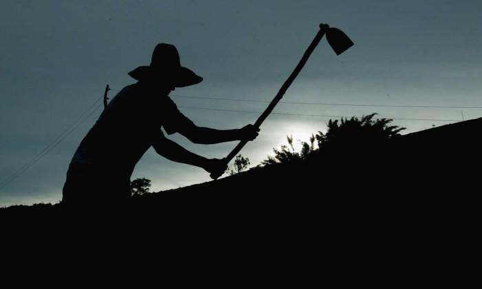 No Noroeste Fluminense, muitos trabalham com em pequenas propriedades agrícolas no município Foto: Fábio Rossi / O Globo