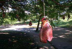 Segundo morador, cerca de 30 corações estavam pendurados Foto: Foto do leitor