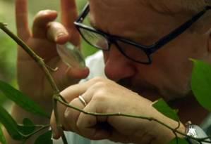 Pesquisador busca superbactérias nas selvas da Malásia: indústria ainda não acordou para o problema Foto: Reprodução/ documentário Vice/HBO