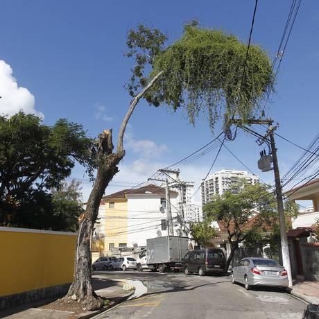 Galhos da árvore se embolam com a fiação em Niterói Foto: Pedro Teixeira / Agência O Globo