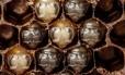 As abelhas polinizam 1/3 do mundo de culturas alimentares