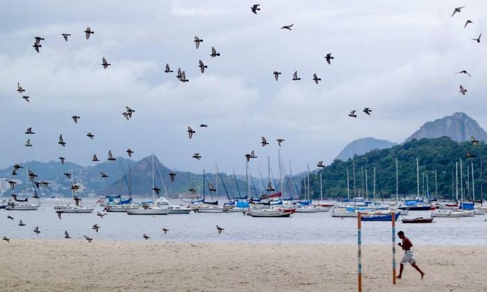 A poluição de suas águas afastou os banhistas, mas a beleza da Enseada de Botafogo atrai turistas Foto: Pedro Kirilos / Agência O Globo