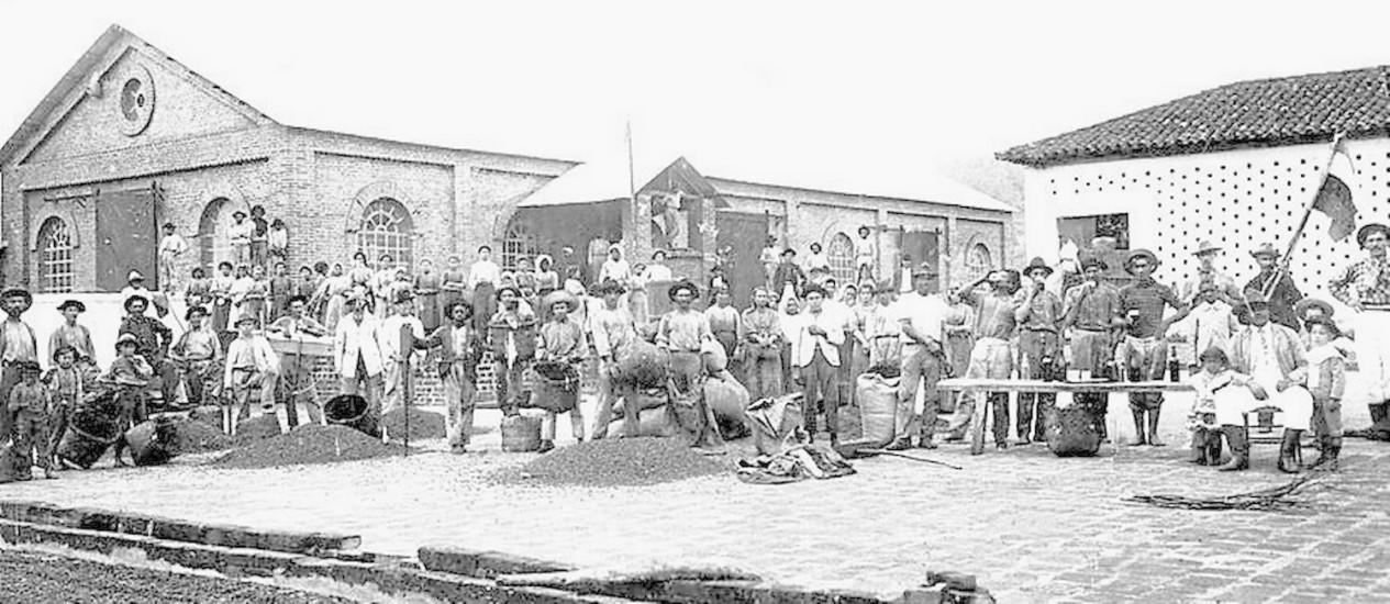 Memória. Trabalhadores posam antes da colheita de 1909 (acima). Ao lado, Maria José Pereira de Araújo Ribeiro, que hoje administra a Fazenda Quilombo Foto: Arquivo /Fazenda Quilombo