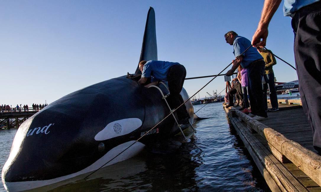 Uma orca falsa em tamanho natural foi colocada na bacia de Astoria, cidade localizada no estado americano de Oregon Joshua Bessex / AP
