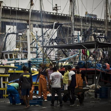 Pescadores dos barcos de médio porte descarregam no Cais 88, na Ilha da Conceição, depois de dias atuando em mar aberto Foto: Guilherme Leporace