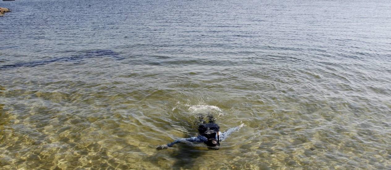 """""""Mar de Caribe"""" na Baía de Guanabara. Mergulhador Moacir de Souza caça """"tesouros"""" na Praia da Urca. Foto: Marcelo Carnaval / Agência O Globo"""