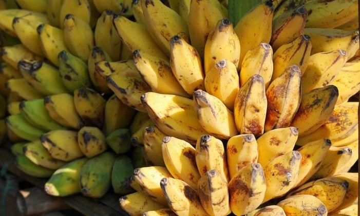 bananas Foto: Reprodução/Pixabay