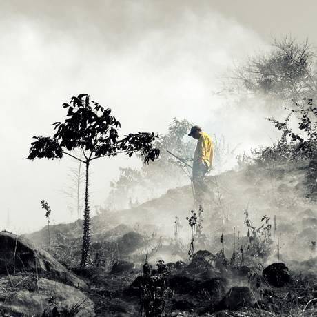Como os bombeiros. Todos os guardas-parques estão habilitados a atuar na prevenção e no combate de incêndios Foto: Divulgação/Felipe Tubarão