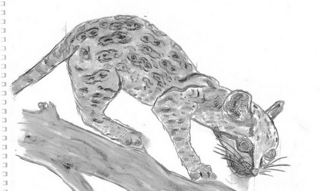 Imagem de leopardo. López completou três semanas de greve de fome na prisão Foto: Arquivo pessoal / Arquivo pessoal