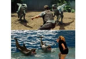 Adestradora com golfinhos Foto: Reprodução