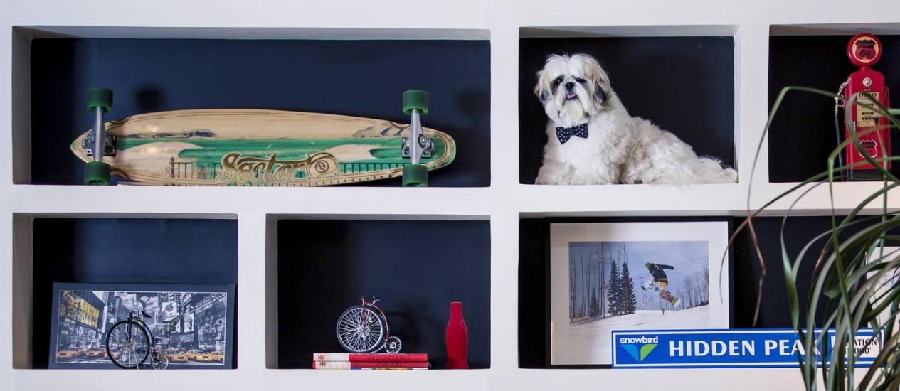 Flavio Jorge na estante do apartamento onde mora com o seu dono, na Barra da Tijuca Foto: Leo Martins / Agência O Globo
