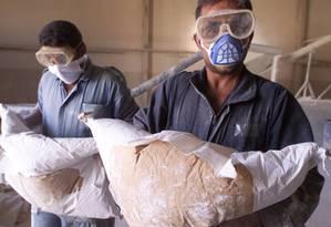Trabalhadores carregam sacos de pesticida Foto: Faleh Kheiber / Reuters/Arquivo