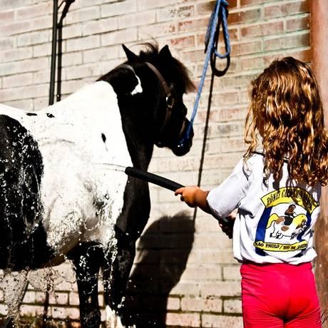 Na colônia de férias Pônei Clube do Brasil, as crianças cuidam dos animais Foto: Agência O Globo / Divulgação/Paulo Jabur